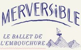 Merversible
